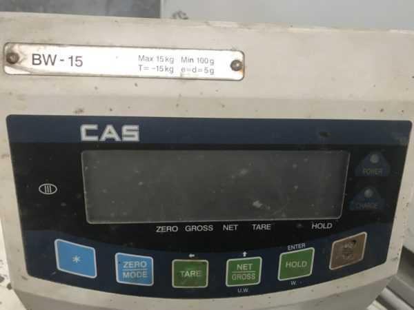 Купить Весы напольные CAS BW-15RB