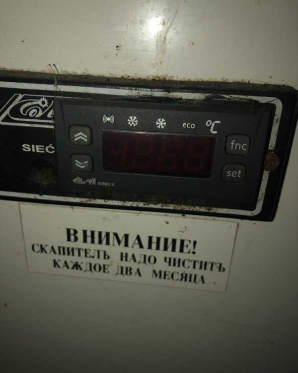 Купить Витрина холодильная cold W-20 SG