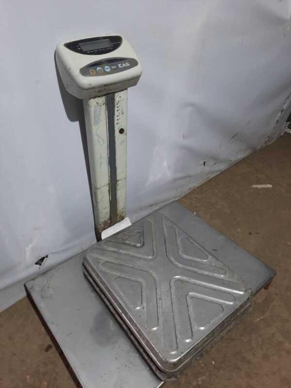 Купить Весы  CAS DL-100 электронные товарные