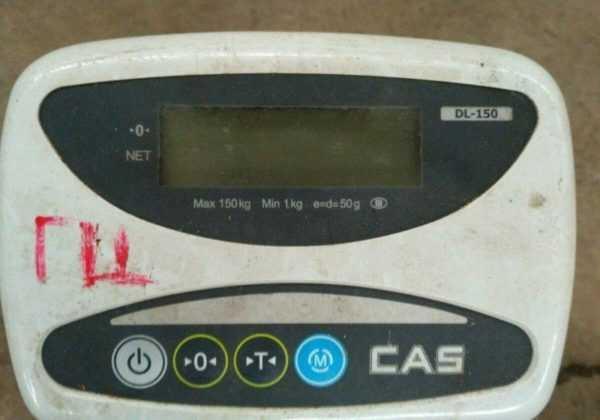 Купить Весы CAS DL-150