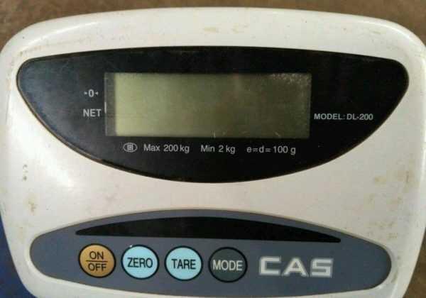 Купить Напольные весы CAS DL-200
