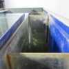Купить Аквариум для рыбы 120х70 160