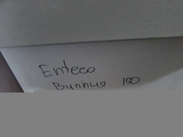Купить Витрина Enteco Вилия 150
