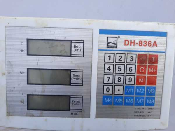 Купить Весы GREATRIVER DH-836A напольные